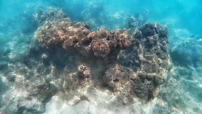 HI underwater-12