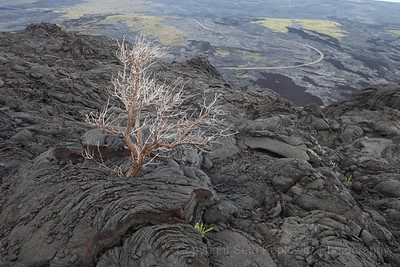 Lava Overlook - Big Island, Hawaii (2018)