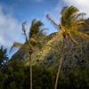 Kua Loa Regional Park (4)