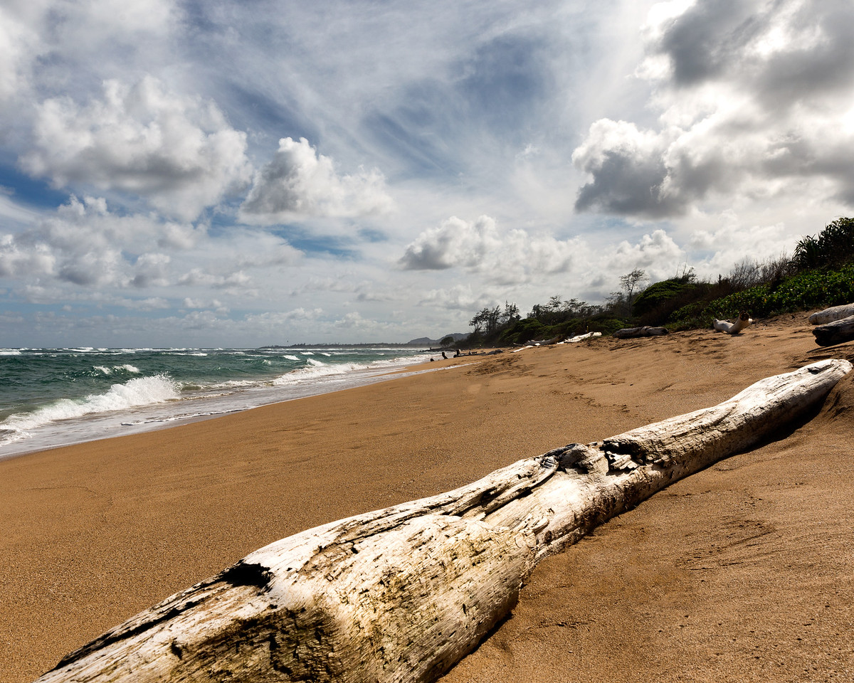 Driftwood and Clouds, Kauai, HI