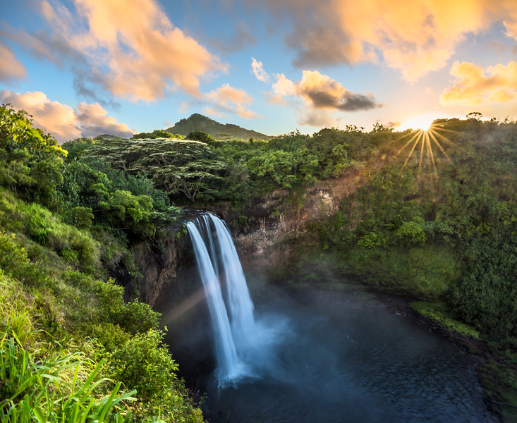 Rainforest Sunlight