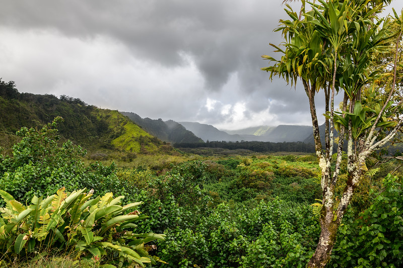 Wailua Valley