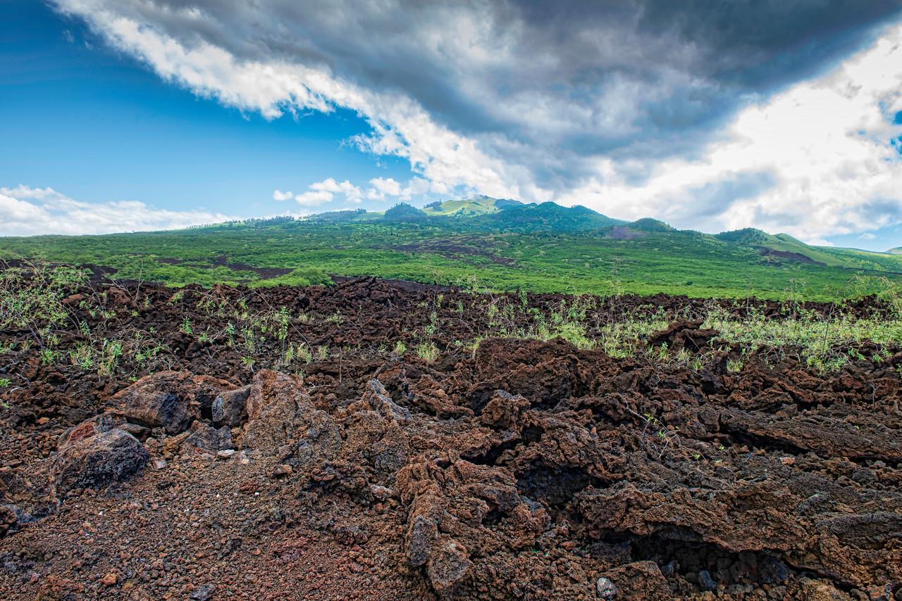 Lava fields in south western Maui