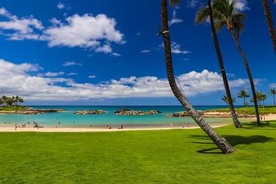 Honu Lagoon