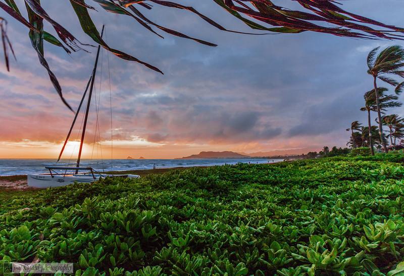 Sunrise - Windward Shore