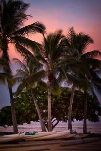 Waikiki (77)