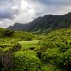 Countryside in Oahu