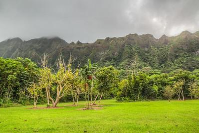 Ho`omaluhia Botanical Garden, Oahua, Hawaii, USA