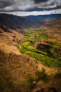 Scenes from above the Waimea Canyon on the northern end of the island of Kauai.  Photo by Kyle Spradley | www.kspradleyphoto.com