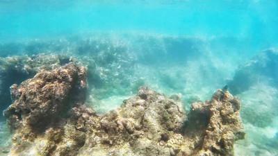 HI underwater-11