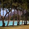 Kua Loa Regional Park (3)