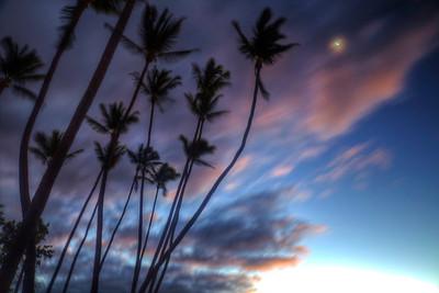 Hawaii_22