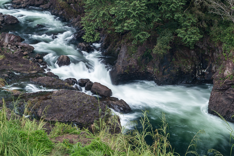 Along the Wailuku River