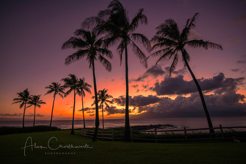 Sunset at Kapalua #1