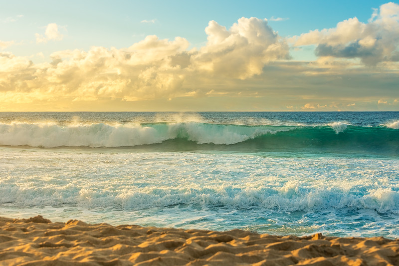 Waimea Waves