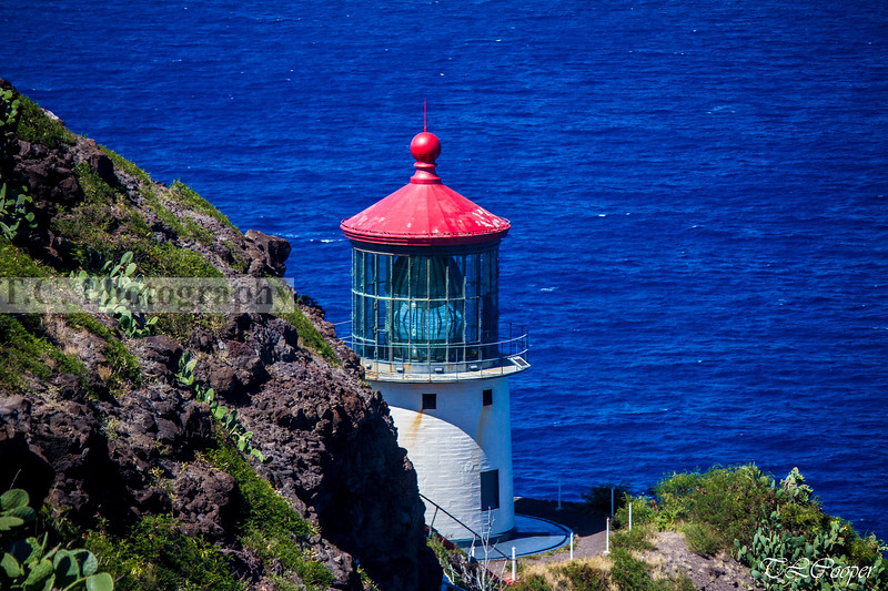 Makapu'u Lighthouse, HI