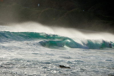 Sandy's Surf