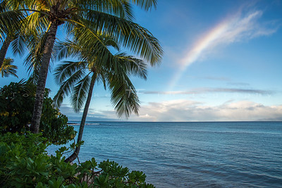 Tropical Island Rainbow