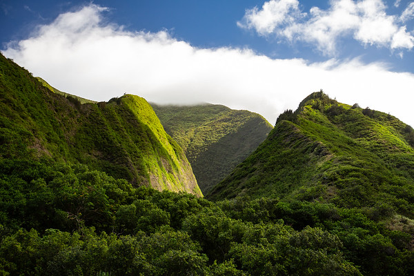 Iao Valley.