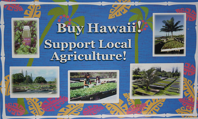 Buy Hawai'i Sign