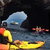Hawaii, UnCruise Adventures, Kayaking, Big Island Hawaii