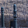 Hawaii, UnCruise Adventures, Kona, Big Island, Kamakahona Heiau Figures