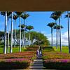 Hawaii, UnCruise Adventures, The Big Island, Hapuna Beach Prince Hotel