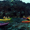 Hawaii, UnCruise Adventures, Kayaking Opihihale, Big Island Hawaii