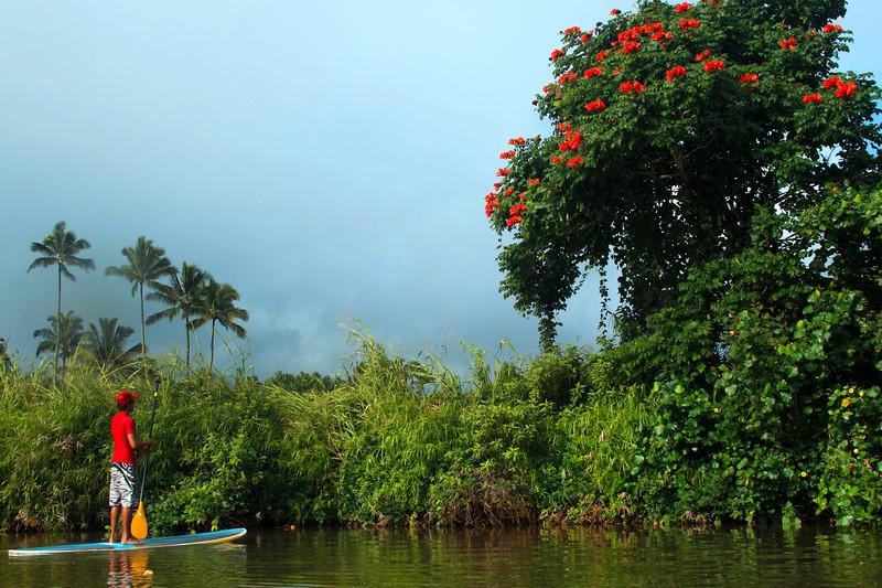 Hawaii, Kauai, Hanalei River