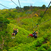 Hawaii, Kauai, Princeville Ranch Adventures Zip Line