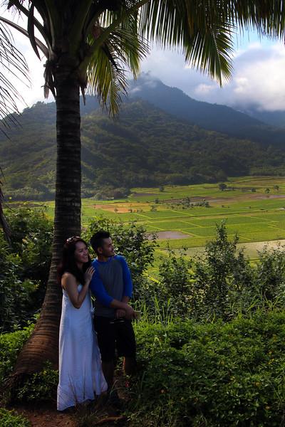 Hawaii, Kauai, Hanalei Valley Taro Fields