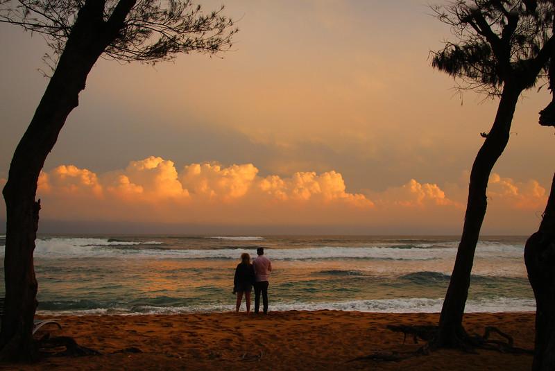 Hawaii, Kauai,  Kapaa's Coconut Coast