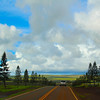 Hawaii, UnCruise Adventures, Scenic Drive to Lanai City
