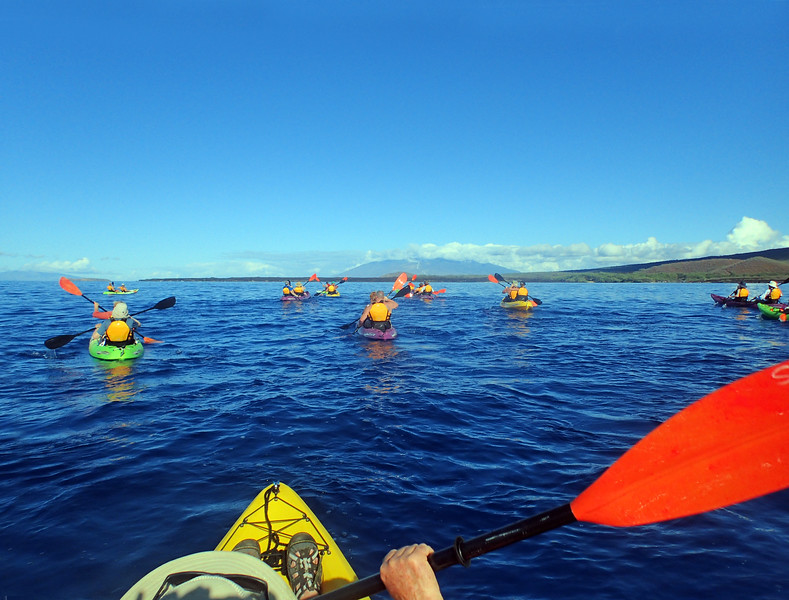 Hawaii, UnCruise Adventures, Kayak trip, Mauai