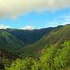Hawaii, UnCruise Adventures,  Halawa Valley