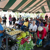 Cooking demo about how to select and prepare 'ulu fruit with Kupuna Shirley Kauhaihao