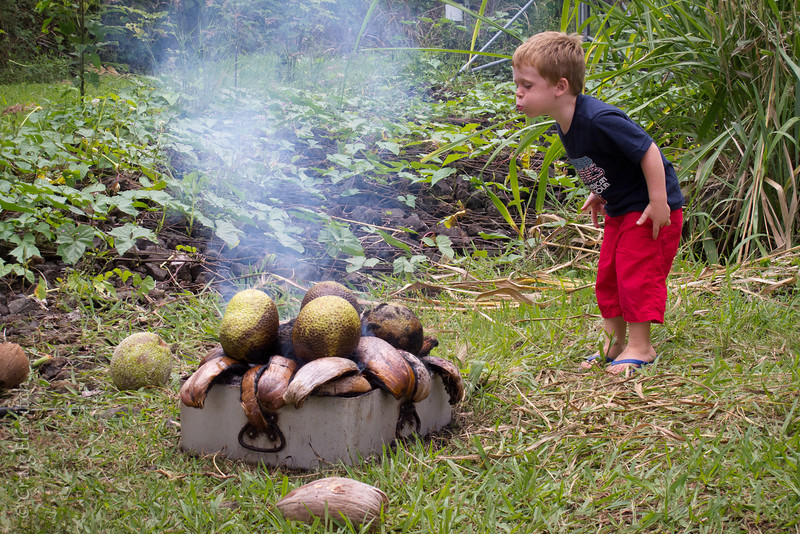 Many activities caught the imagination of keiki, including the roasting of 'ulu on an open fire.