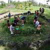 Kamehameha Schools summer school students weed the makaloa patch.