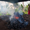 Hoea Ea 2010 : Hoea Ea 2010 was an experiential learning food security and cultural event that took place at Lihikai Hawaiian Cultural Learning Center at Onekahakaha, Hilo, Hawai'i July 7-11, 2010.
