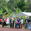 The popular coconut water and carving tent.