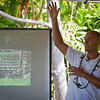 Ian Cole talks about 'ulu tree health and maintenance.