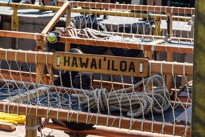 HawaiiloaAN032414-1