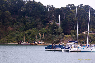 Start of the day, only 3 vaka in port - 08/06/11 - from left to right Te Matau a Maui, Marumaru Atua, Gaualofa