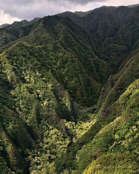 High Mountain Valley in the Koolau Range
