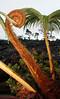 ~ Hapu`u #2 ~ -- Tree Fern native to Hawaii<br /> <br /> (Order form # 38)