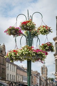 18 ILG Aug Floral Gateway  (2)