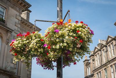 18 ILG Aug Floral Gateway  (5)