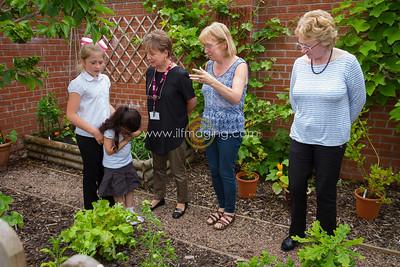 17 ILF June St Margarets Garden 0005