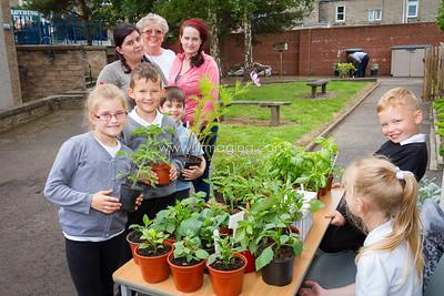 17 ILF June St Margarets Garden 0002