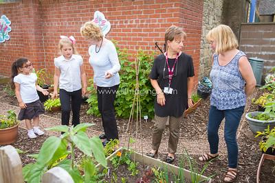 17 ILF June St Margarets Garden 0009